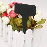 100 Pcs Épais en Plastique Marqueurs Plant Étiquettes Noir T Type Jardin Plant Étiquettes Étanche de la marque KINGLAKE image 3 produit