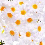 120 Pièces Têtes de Fleurs de Marguerite Artificielle Blanc Gerbera Fleurs en Tissu pour Bonnet de Pâques Décoration de Mariage et DIY Artisanat de la marque Frienda image 5 produit