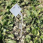 50 pcs étanche réutilisable en plastique Plante étiquettes type de maison Chambre d'enfant Jardin étiquettes Tags marqueurs, 50PCS Wihte Curved T-Type de la marque G2PLUS image 2 produit