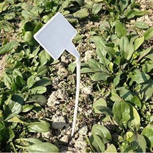 50 pcs étanche réutilisable en plastique Plante étiquettes type de maison Chambre d'enfant Jardin étiquettes Tags marqueurs, 50PCS Wihte Curved T-Type de la marque G2PLUS image 0 produit