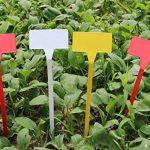 50 pcs étanche réutilisable en plastique Plante étiquettes type de maison Chambre d'enfant Jardin étiquettes Tags marqueurs, 50PCS Wihte Curved T-Type de la marque G2PLUS image 3 produit