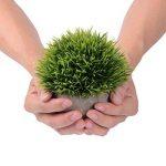 Attvn Petites plantes en pot artificielles - 2 Pack Mini fausses plantes vertes avec des Pots gris pour décoration de la marque Attvn image 1 produit