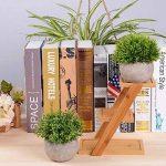 Attvn Petites plantes en pot artificielles - 2 Pack Mini fausses plantes vertes avec des Pots gris pour décoration de la marque Attvn image 3 produit