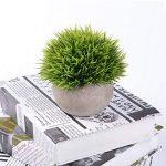 Attvn Petites plantes en pot artificielles - 2 Pack Mini fausses plantes vertes avec des Pots gris pour décoration de la marque Attvn image 4 produit