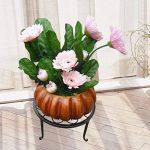 Beiguoxia Pot de fleurs rond support pour plantes fer Rack Home Garden balcon Décor, Métal, noir, Taille unique de la marque beiguoxia image 2 produit