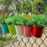 BESTOMZ 5pcs Pot de Fleur Balcon à Suspendre en Métal Pot Suspendue Extérieur pour Jardin Balcon(Couleurs Mixtes) de la marque BESTOMZ image 1 produit