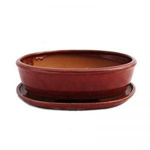 Bonsai Bol avec sous assiette Taille 4–Rouge–Ovale–Modèle O3–L 26cm–B 20,5cm–H 7,5cm de la marque Exotenherz image 0 produit