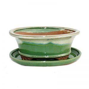 """Bonsai Bol avec sous assiette Taille 8""""– Vert/Beige–Ovale–Modèle O4–L 21cm–B 17cm–H 6cm de la marque Exotenherz image 0 produit"""