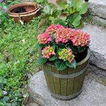 Cache-pot de grande qualité, pot de fleurs, jarre en bois robuste de conifère (HÊTRE) – disponible en nombreuses tailles (350 x350) de la marque evama image 3 produit
