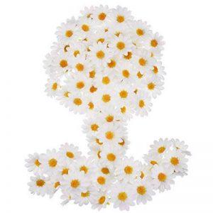cadre végétal blanc TOP 10 image 0 produit