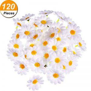cadre végétal blanc TOP 11 image 0 produit