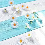 cadre végétal blanc TOP 11 image 4 produit