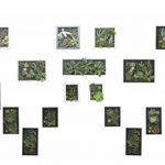 cadre végétal blanc TOP 2 image 1 produit