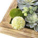 cadre végétal blanc TOP 2 image 4 produit