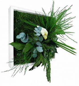 cadre végétal blanc TOP 3 image 0 produit