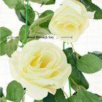 cadre végétal blanc TOP 9 image 2 produit