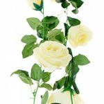 cadre végétal blanc TOP 9 image 4 produit