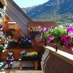 coupelle pour jardinière TOP 14 image 3 produit