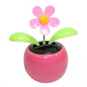 déplace pot de fleur TOP 1 image 0 produit