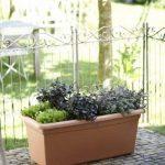 Elho 2055436 Green Basics Garden Pot de Fleurs Noir Taille XXL 100 x 50 x 42 cm de la marque Elho image 1 produit
