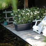Elho 2055436 Green Basics Garden Pot de Fleurs Noir Taille XXL 100 x 50 x 42 cm de la marque Elho image 3 produit