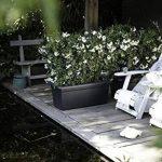 Elho 2055436 Green Basics Garden Pot de Fleurs Noir Taille XXL 100 x 50 x 42 cm de la marque Elho image 5 produit