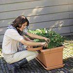 Elho 2055436 Green Basics Garden Pot de Fleurs Noir Taille XXL 100 x 50 x 42 cm de la marque Elho image 6 produit