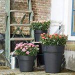 Elho 2104118 Green Basics Top Planter High Pot à Fleurs Blanc 35 cm de la marque Elho image 1 produit