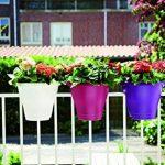 Elho Corsica Flower Bridge Jardinière Balcon 30cm - Cerise de la marque Elho image 3 produit