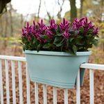 Elho Corsica Flower Bridge Jardinière Balcon 60cm - Menthe de la marque Elho image 1 produit