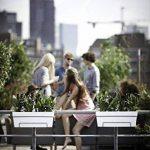 Elho Loft Urban Balconnière All-in-One Jardinière Balcon 50cm - Blanc de la marque Elho image 3 produit