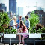 Elho Loft Urban Balconnière All-in-One Jardinière Balcon 50cm - Blanc de la marque Elho image 4 produit