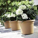 Elho Pot à fleurs Green basics Vert Feuilles Taille 40 cm 8733053936000 de la marque Elho image 1 produit