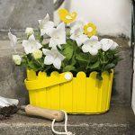 Emsa 513926 Landhaus Panier pour Jardin Polypropylène Jaune 28 x 14 cm de la marque Emsa image 3 produit