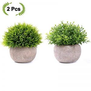 etagere pour plantes vertes TOP 12 image 0 produit