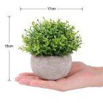 etagere pour plantes vertes TOP 12 image 2 produit