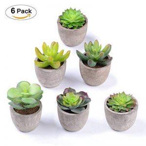 etagere pour plantes vertes TOP 9 image 0 produit