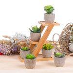 etagere pour plantes vertes TOP 9 image 1 produit