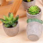 etagere pour plantes vertes TOP 9 image 4 produit