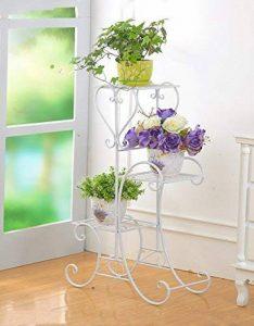 Etagere Pour Orchidee Faites Une Affaire Pour 2019 Bellissiplantes