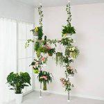 etagère télescopique plante TOP 5 image 3 produit