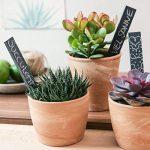 étiquette plantes au jardin TOP 8 image 2 produit