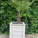 evama Pot, pot de fleurs, boîte Bois seau en chêne solide pour le jardin–Disponible en plusieurs tailles 65x65x65 de la marque evama image 1 produit