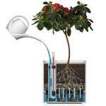 Flower Lover Cubico Pot de fleurs avec système d'arrosage 21 x 21 x 21 cm 21x21x21 rouge de la marque Flower lover image 1 produit
