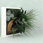 FLOWERBOX Tableau Nature Mono avec Plantes Stabilisées de la marque FLOWERBOX image 1 produit