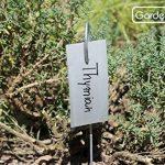 GardenMate® Hook Lot de 25 marque plantes en acier galvanisé métal zinc de la marque GardenMate® image 2 produit
