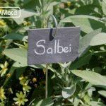 GardenMate® Lot de 10 signets marque-plantes en ardoise avec tiges métalliques - style moderne de la marque GardenMate® image 1 produit