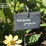 GardenMate® Lot de 10 signets marque-plantes en ardoise avec tiges métalliques - style naturelle de la marque GardenMate® image 3 produit