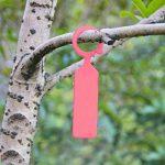 Gosear Etiquette Jardin, 100 Pièces en Plastique Étiquettes de Plante Imperméable à l'eau Accrocher Etiquettes d'usine de Panneaux Bougies Multi Couleur de la marque Gosear image 2 produit