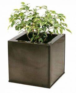 grand pot de fleur en zinc TOP 0 image 0 produit